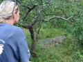 11  Zambie Viktoriiny vodopády