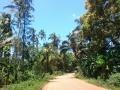 2 Zanzibar cesta