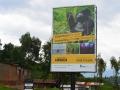 1 Rwanda Gorilla Trek