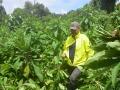 5 Rwanda Gorilla Trek