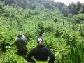 7 Rwanda Gorilla Trek