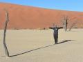 23  Namibie Sossousvlei