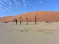 24  Namibie Sossousvlei