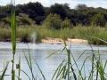 1 Namibie Okavango