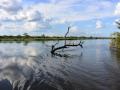 6 Namibie Okavango