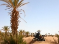 maroko-53