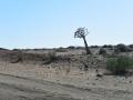 Namibie 008