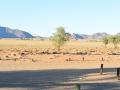 Namibie 052