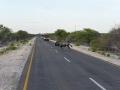 Namibie 090