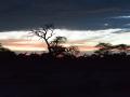 Namibie 125