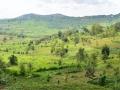 14 Rwanda