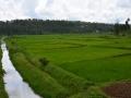 17 Rwanda