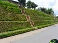 20 Rwanda