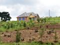 24 Rwanda