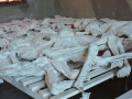 9 Rwanda Murambi ostatky těl