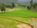 206 Vietnam
