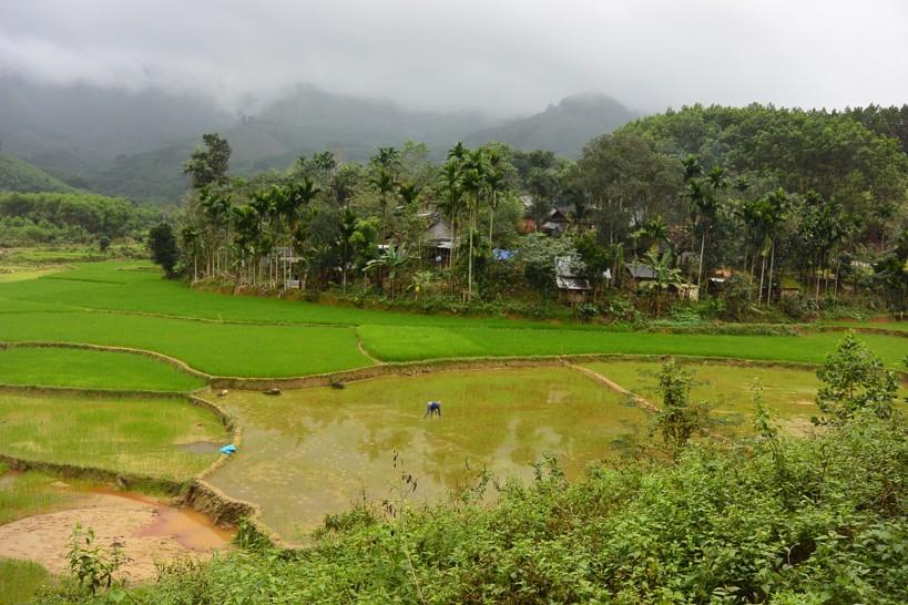 205-Vietnam